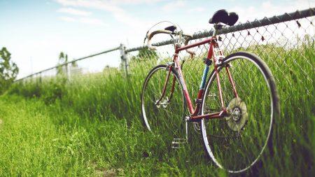 bike, grass, street