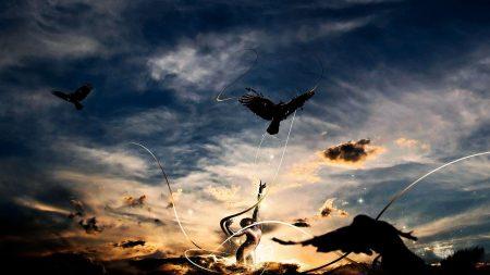birds, sky, line