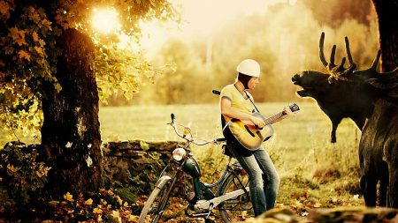bjorn rosenstrom, sunset, guitar