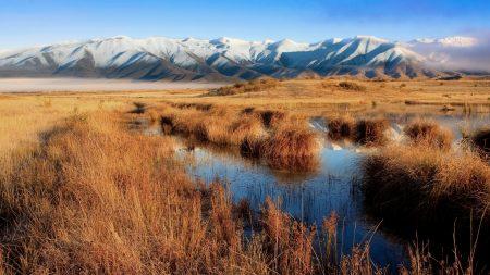 bog, mountains, grass