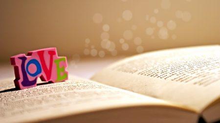 book, dice, label