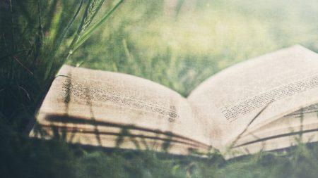 book, grass, paper