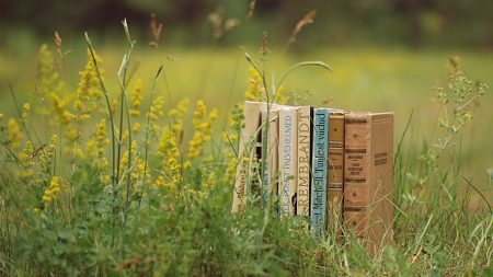 books, grass, stack
