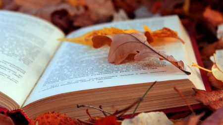 books, texts, leaves