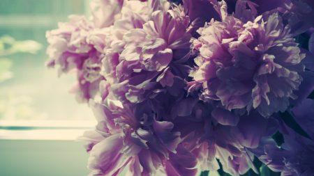 bouquet, flowers, bright
