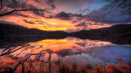 branch, lake, clouds