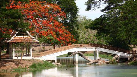 bridge, arbor, japan