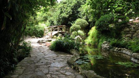 bridge, garden, path