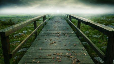 bridge, path, boards
