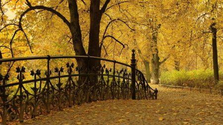 bridge railing, park, autumn