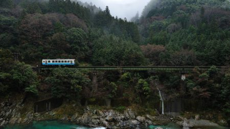 bridge, railroad, trees