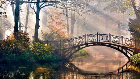 bridge, sun, beams