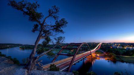 bridge, tree, river