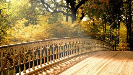 bridge, wooden, handrail