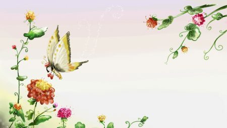 butterfly, flowers, flight