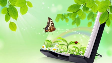 butterfly, stand, greens