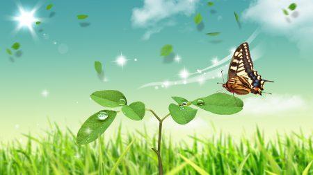 butterfly, stem, petal