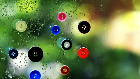 buttons, colorful, wet