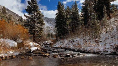 california, mountain river, stones