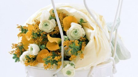 calla lilies, mimosa, flowers