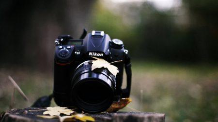camera, nikon, grass