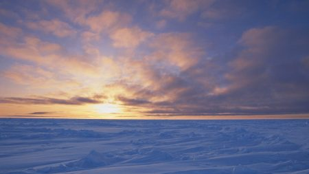 canada, desert, snow