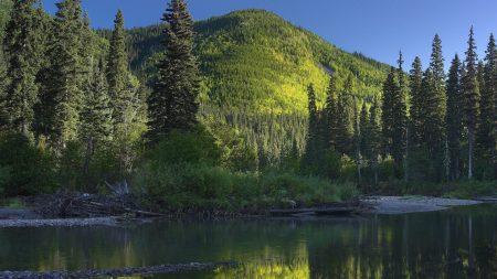canada, wood, lake