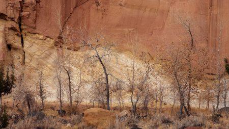 canyon, wall, rocks