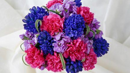 carnations, flowers, bouquet