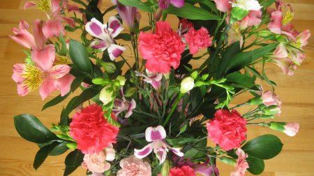 carnations, lilies, irises