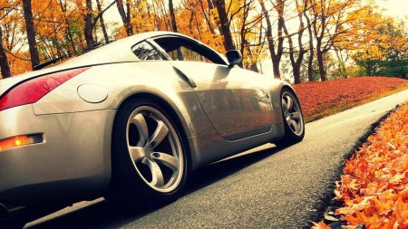 cars, road, autumn