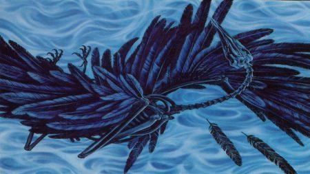 cemetary, feathers, skeleton