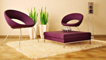 chair, rug, plants