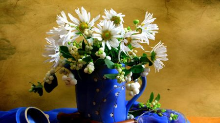 chamomile, flowers, pitcher