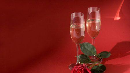 champagne, flower, rose