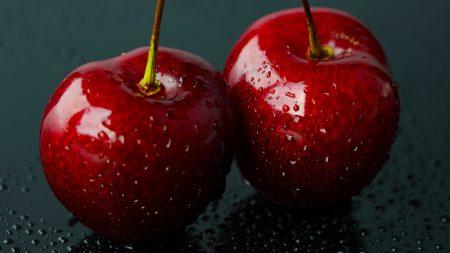 cherry, couple, branch