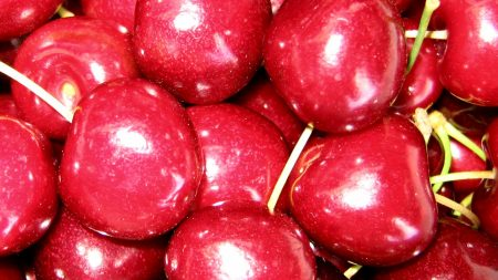cherry, red, brilliant