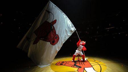 chicago bulls, basketball, emblem