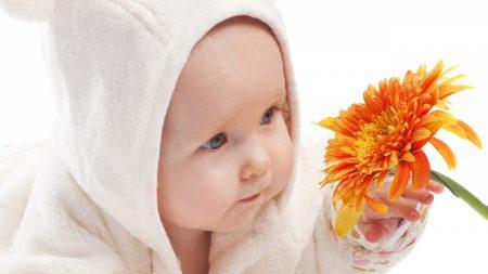 child, flower, clothing
