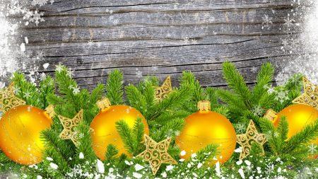 christmas decorations, pine needles, star