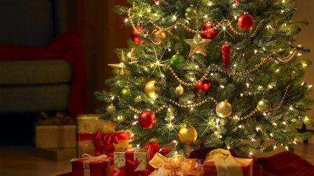 christmas, new year, tree