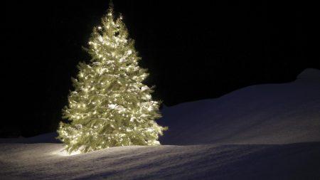 christmas tree, garland, snow