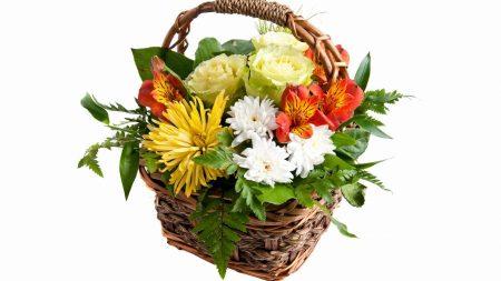 chrysanthemums, alstroemeria, roses