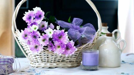 chrysanthemums, flowers, basket