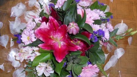 chrysanthemums, lilies, gerberas