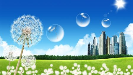 city, dandelion, bubbles