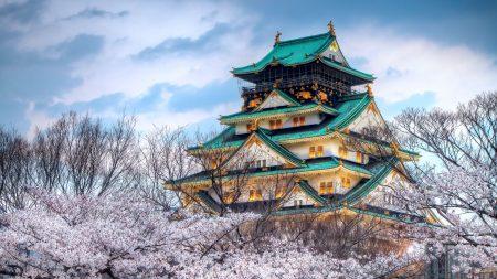 city??, japan, temple