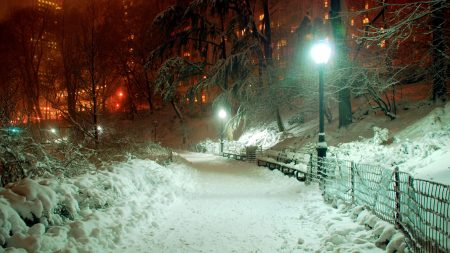 city, lights, snow
