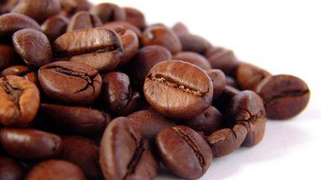 close-up, grain, beans