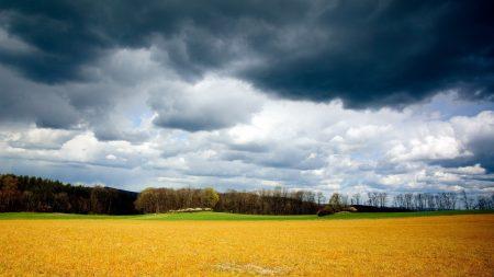 clouds, field, sky
